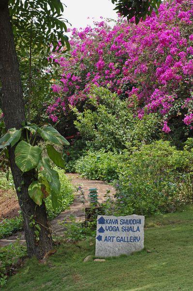 SwaSwara – CGH Earth