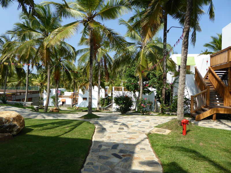 UTMT – Underneath the Mango Tree